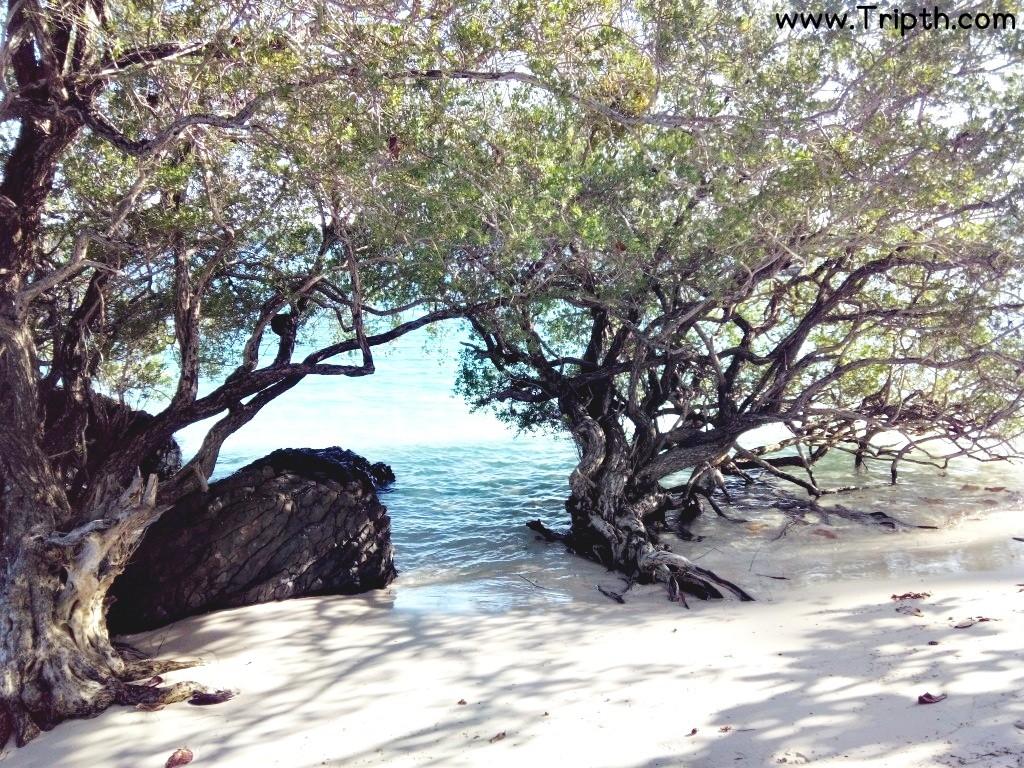 เกาะขาม ตราด By Tripth (54)
