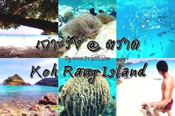 ทริปดำน้ำหมู่เกาะรัง เกาะหมาก @ ตราด