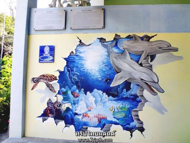 พิพิธภัณฑ์ชลทัศนสถานเกาะสีชัง (2)