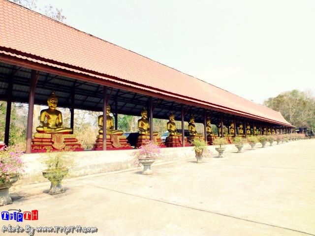 พระพุทธรูปเรียงรายยาวเยียด
