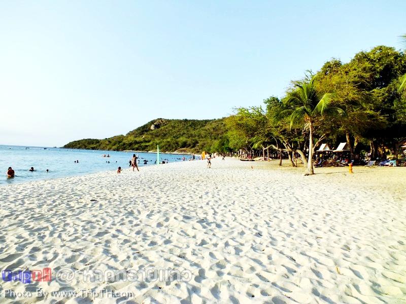 ชายหาดสีขาว