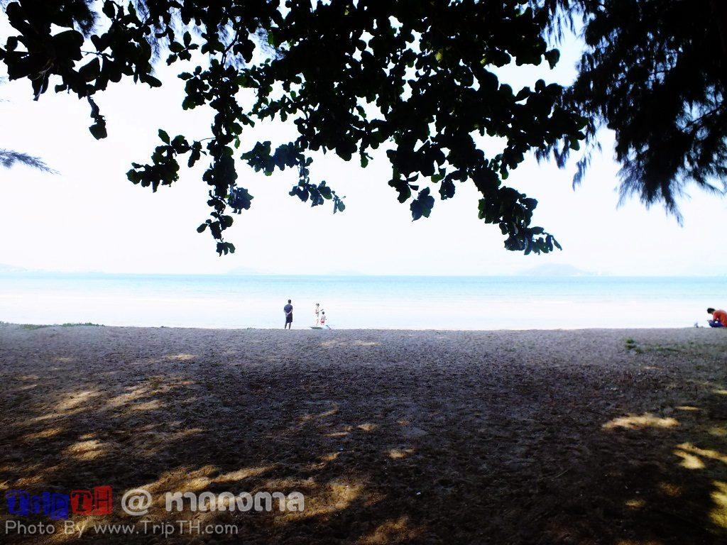 ชายหาด ร่มรื่น (1)