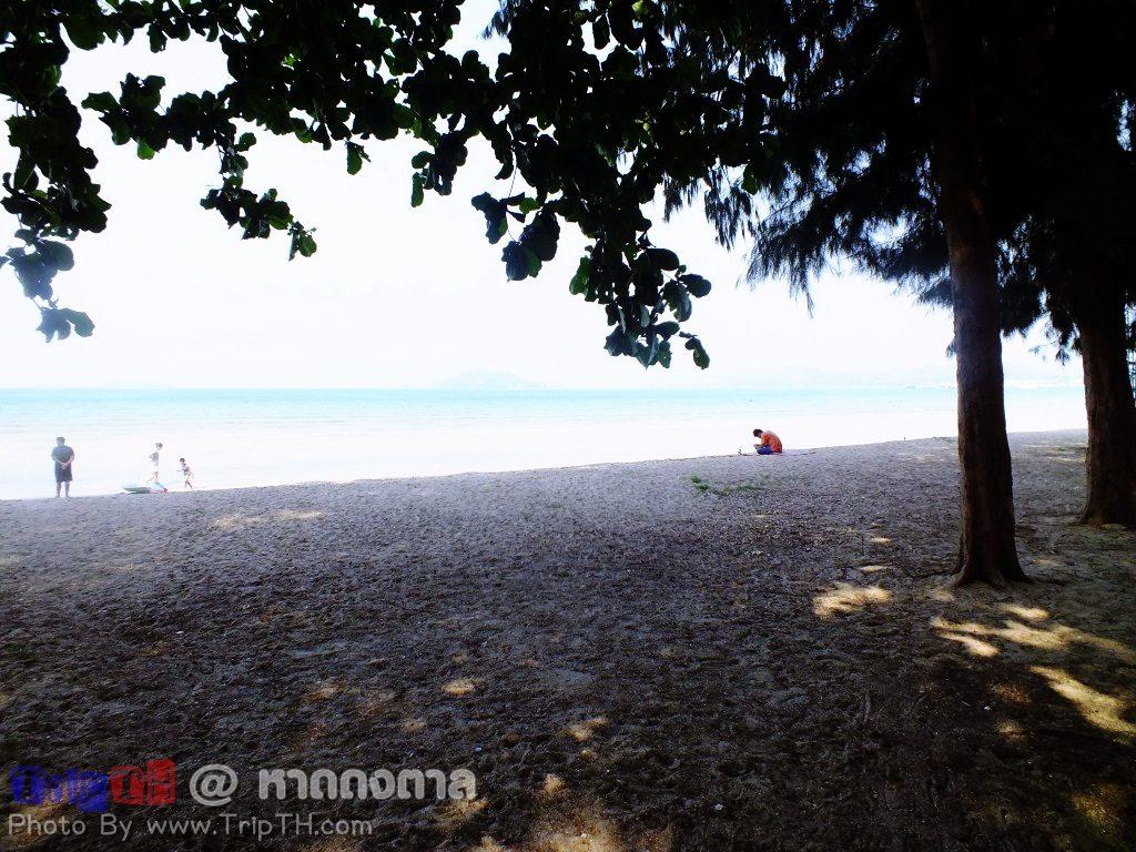 ชายหาด ร่มรื่น (2)