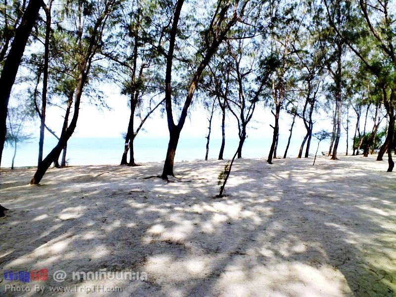 บรรยากาศ หาดเทียนทะเล (5)