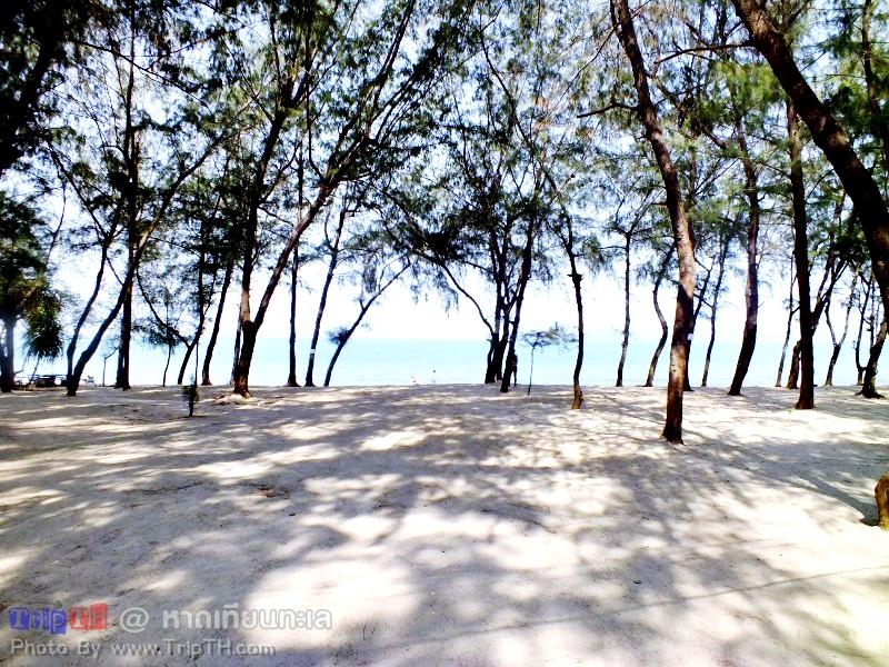 หาดเทียนทะเล สัตหีบ (2)