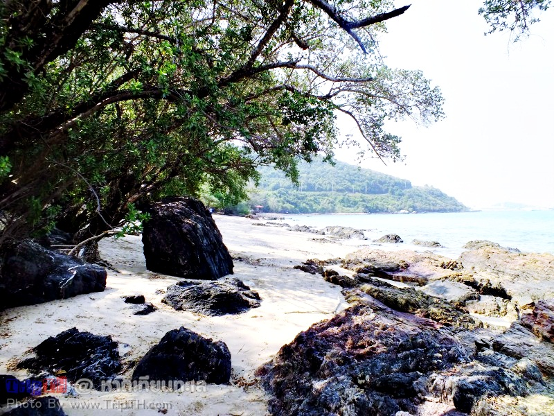 หาดเทียนทะเล สัตหีบ (3)