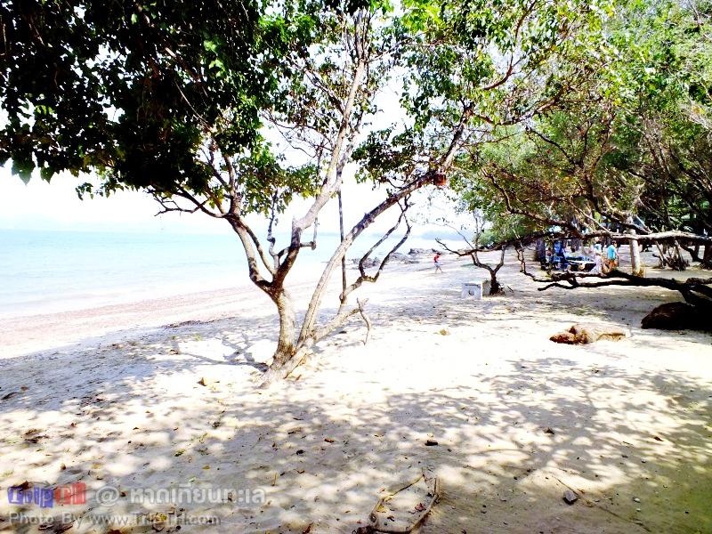 หาดเทียนทะเล (4)