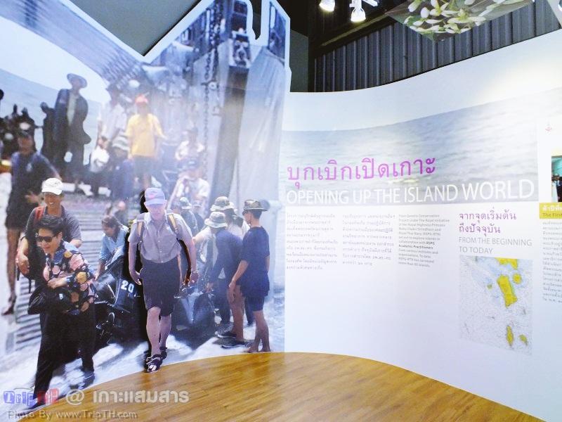 พิพิธภัณฑ์ธรรมชาติวิทยาเกาะและทะเลไทย (1)