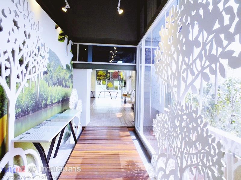 พิพิธภัณฑ์ธรรมชาติวิทยาเกาะและทะเลไทย (2)