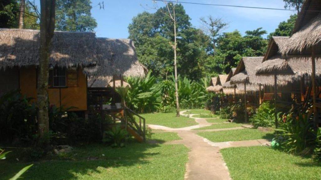 จังเกิ้ล การ์เดน (Jungle Garden)