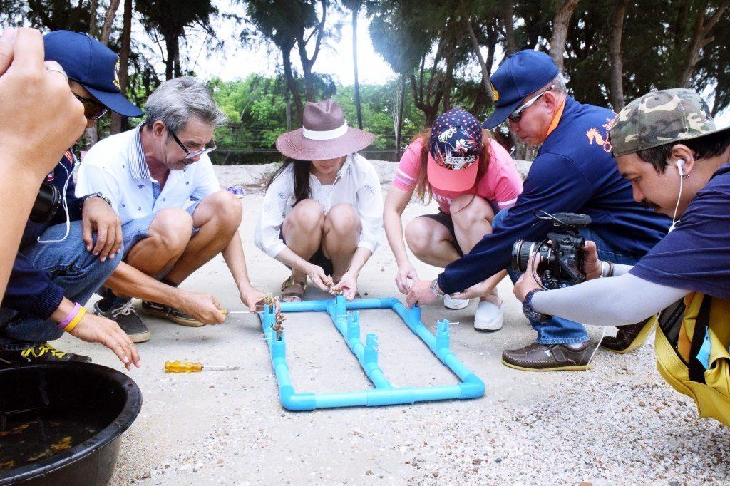 ปลูกปะการัง