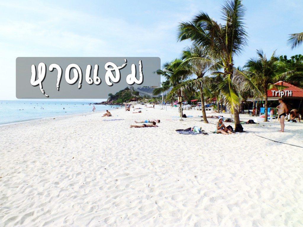 หาดแสม (1)