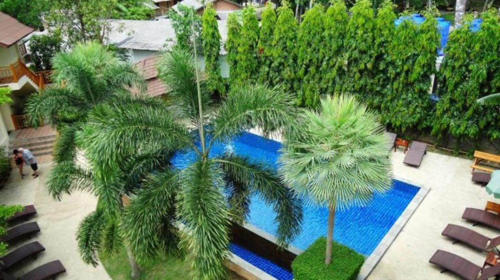 แพดดี้ส์ ปาล์ม รีสอร์ท (Paddy's Palms Resort)