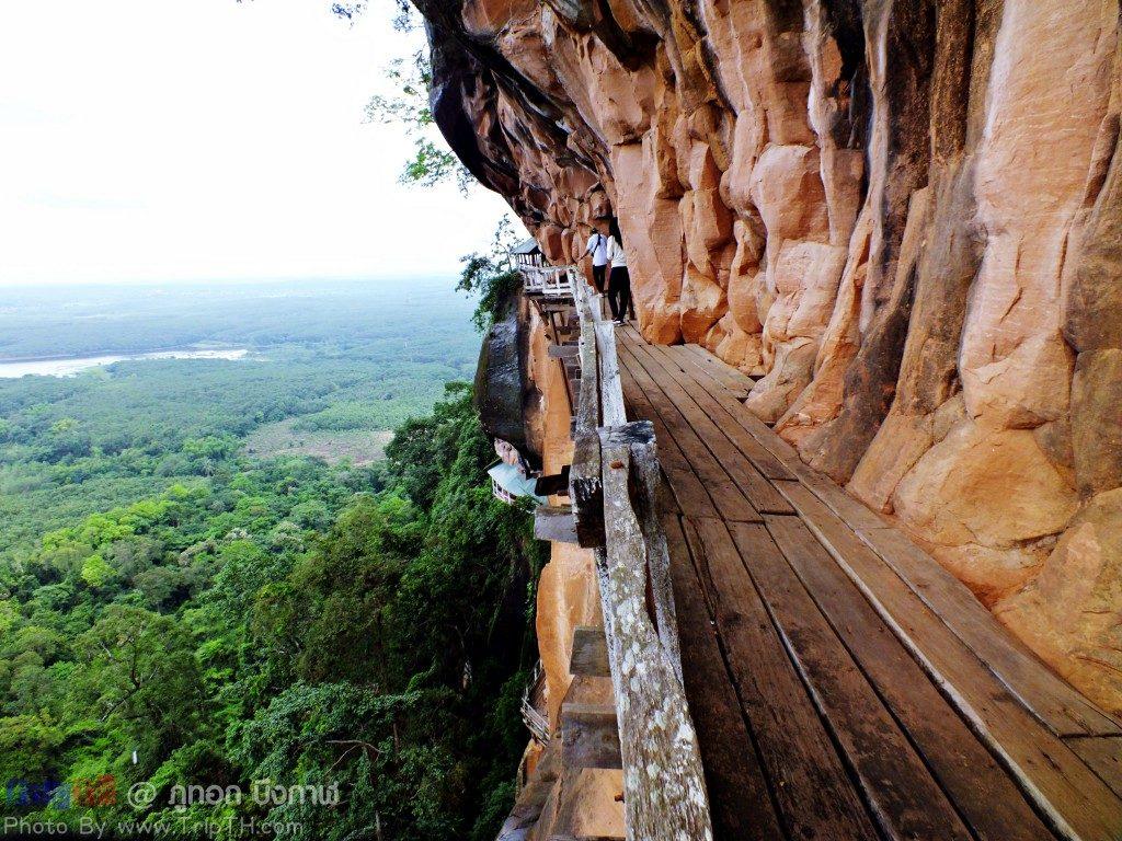สุดยอดความหวาดเสียวสะพานไม้ ภูทอก (3)