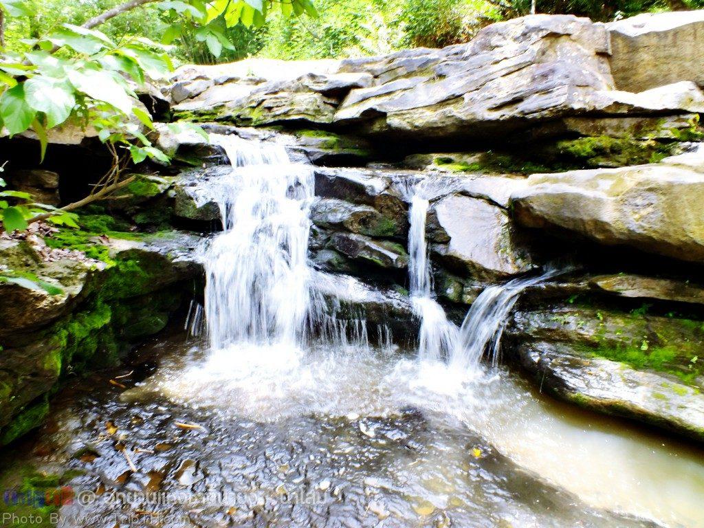 อุทยานแห่งชาตินายูง - น้ำโสม (5)