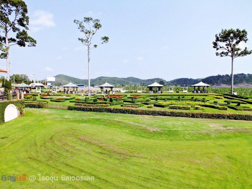 สวนดอกไม้ ซิลเวอร์เลค(4)