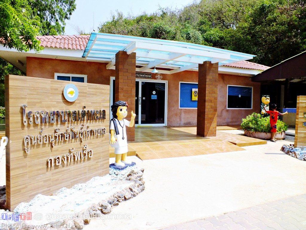 โรงพยาบาลเต่าทะเล
