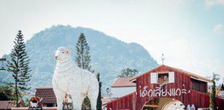 Swiss Sheep Farm Pattaya (3)