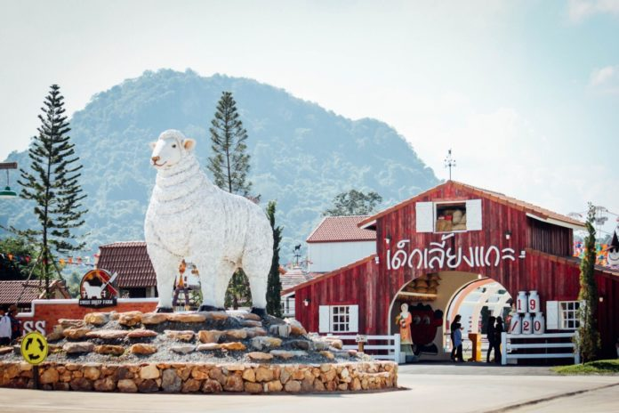 Swiss Sheep Farm Pattaya (3)