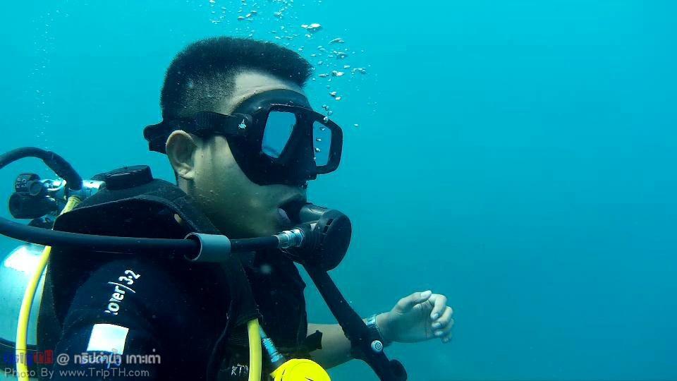 จุดดำน้ำ อ่าวลึก เกาะเต่า (4)