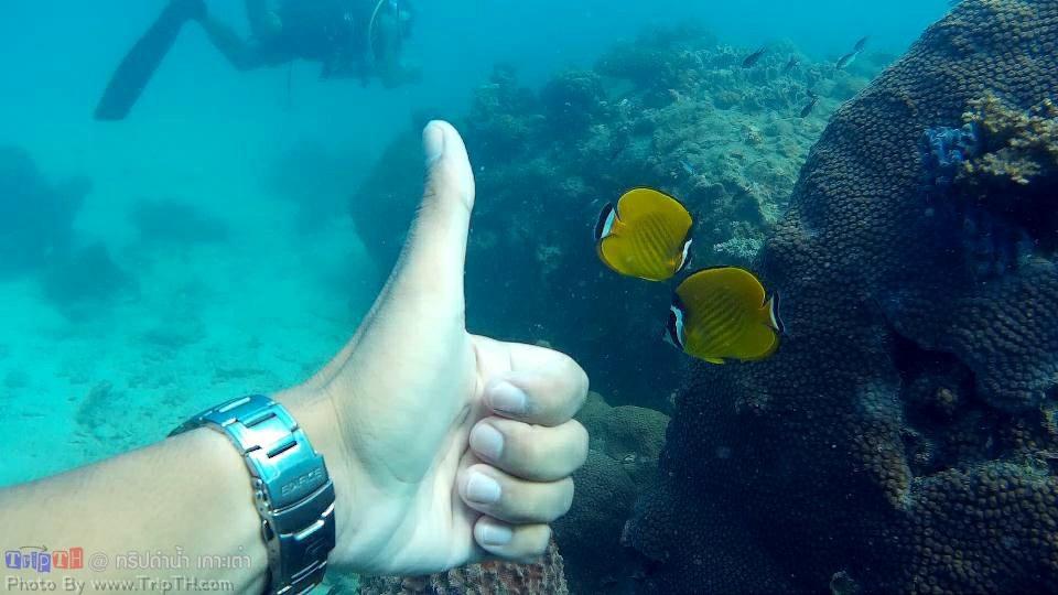 จุดดำน้ำ อ่าวหินงาม (4)
