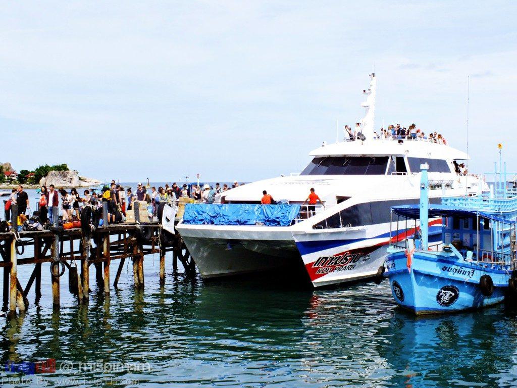 ท่าเรือเกาะเต่า (1)