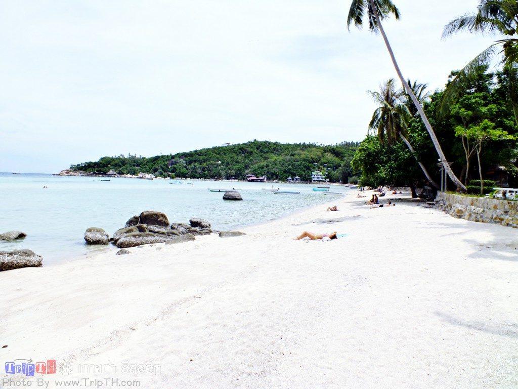 หาดเกาะเต่ารีสอร์ท อ่าวโฉลก (3)