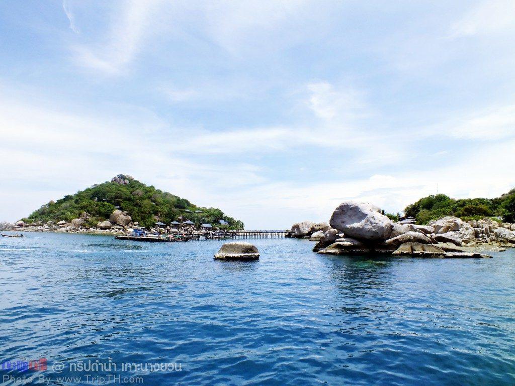 เกาะนางยวน (1)