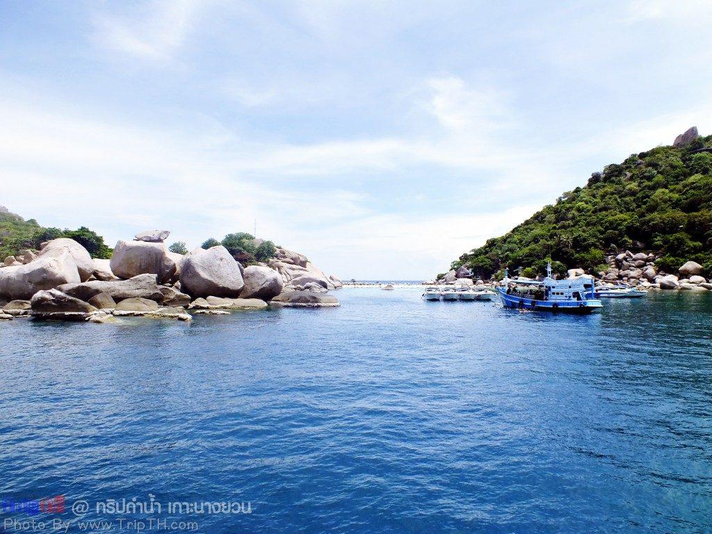 เกาะนางยวน (2)