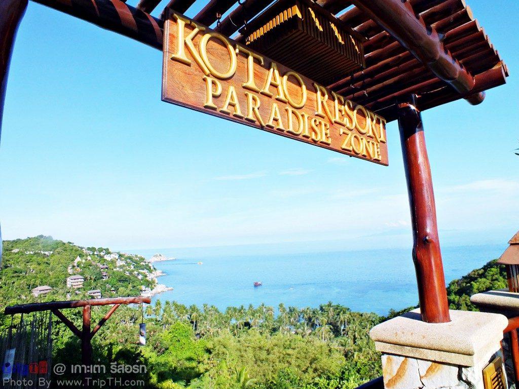 เกาะเต่ารีสอร์ท พาราไดซ์ โซน (1)