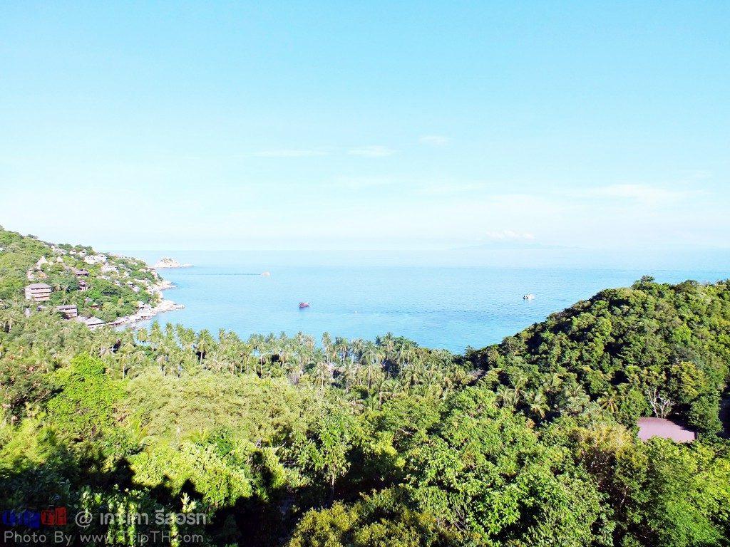 เกาะเต่ารีสอร์ท พาราไดซ์ โซน (2)