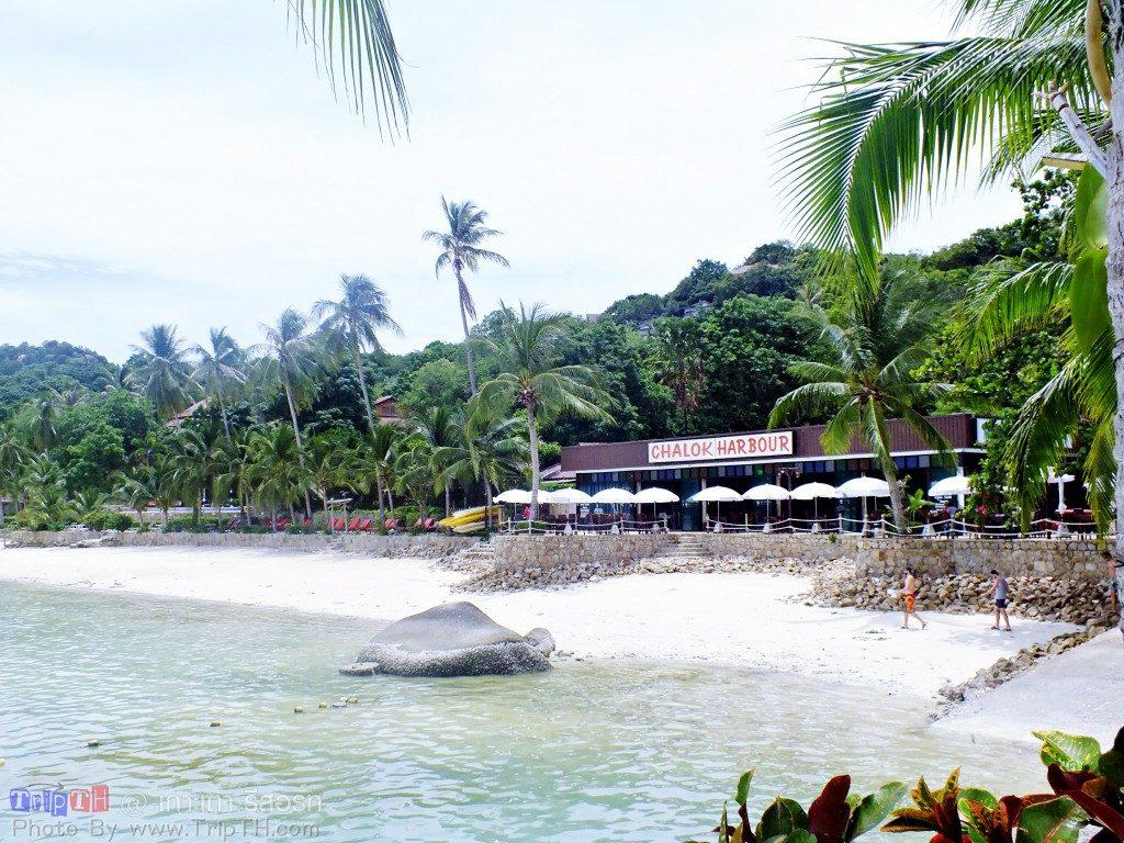 เกาะเต่ารีสอร์ท (4)