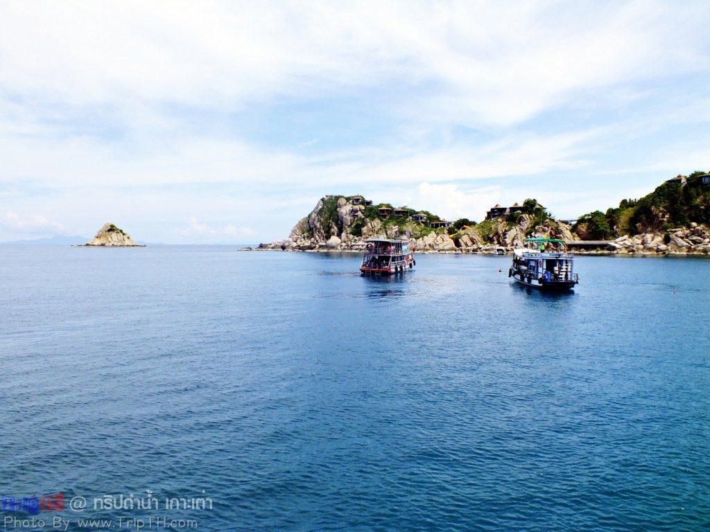 จุดดำน้ำ อ่าวหินงาม เกาะเต่า (1)
