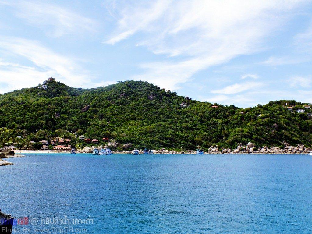 จุดดำน้ำ อ่าวหินงาม เกาะเต่า (3)