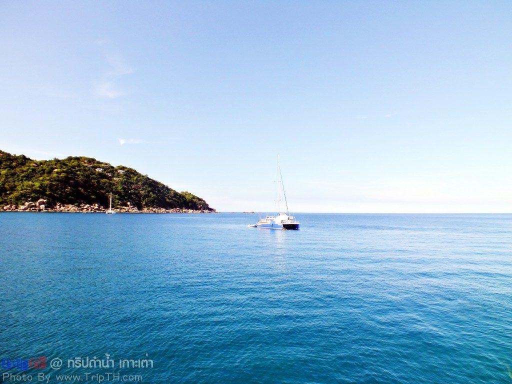 จุดดำน้ำ อ่าวหินงาม เกาะเต่า (4)
