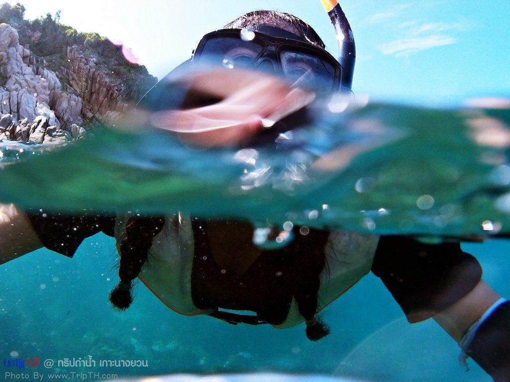 จุดดำน้ำ Bouyancy World (3)