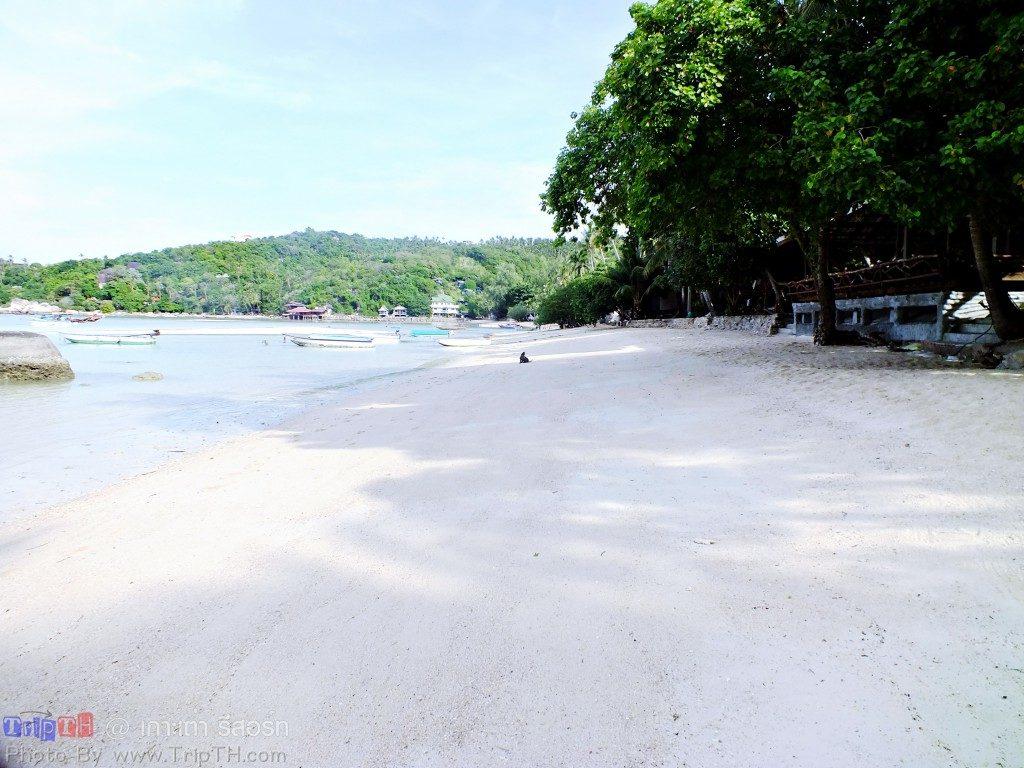 ชายหาดหน้าเกาะเต่า รีสอร์ท (1)