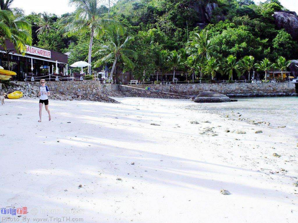 ชายหาดหน้าเกาะเต่า รีสอร์ท (2)