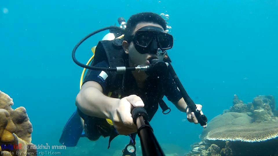 ทริปดำน้ำ เกาะเต่า (1)