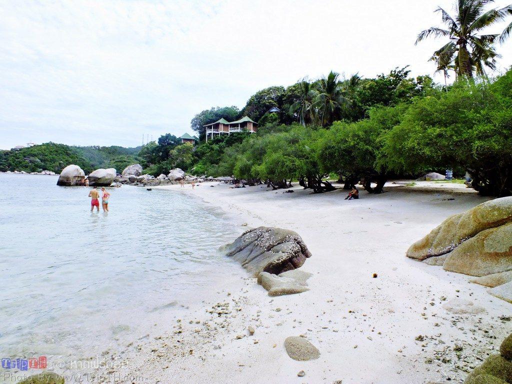 หาดฟรีดอม (1)