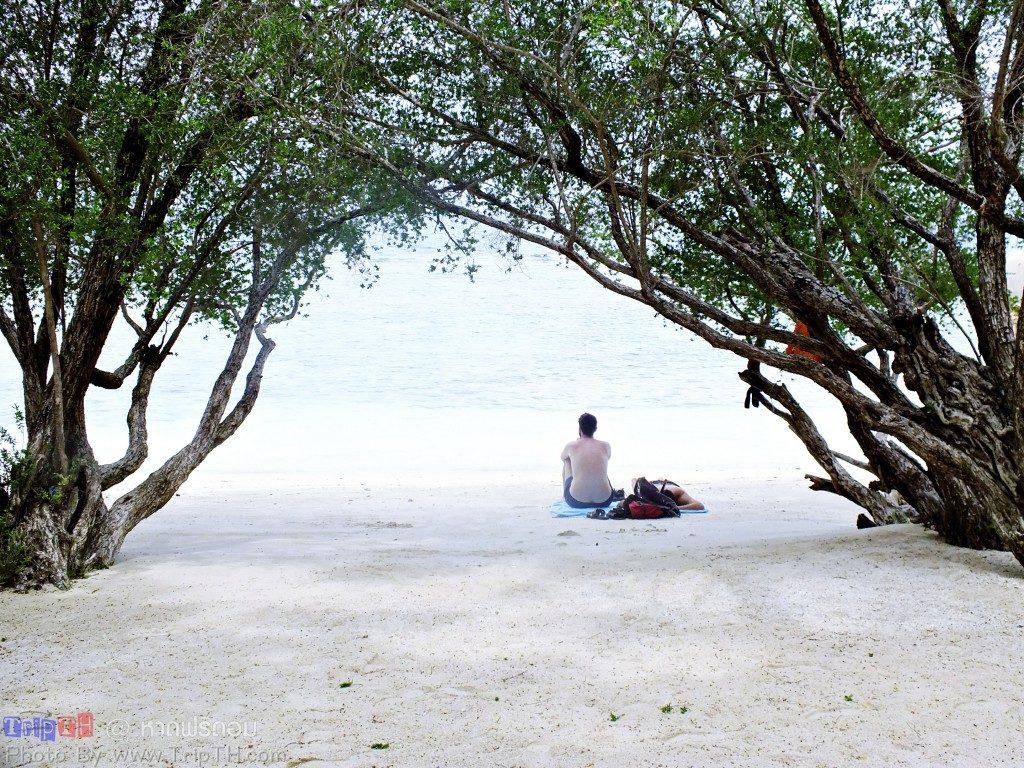 หาดฟรีดอม (3)