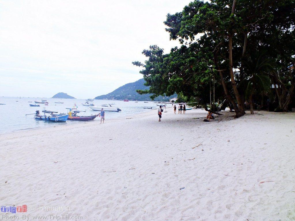 หาดแม่หาด (3)