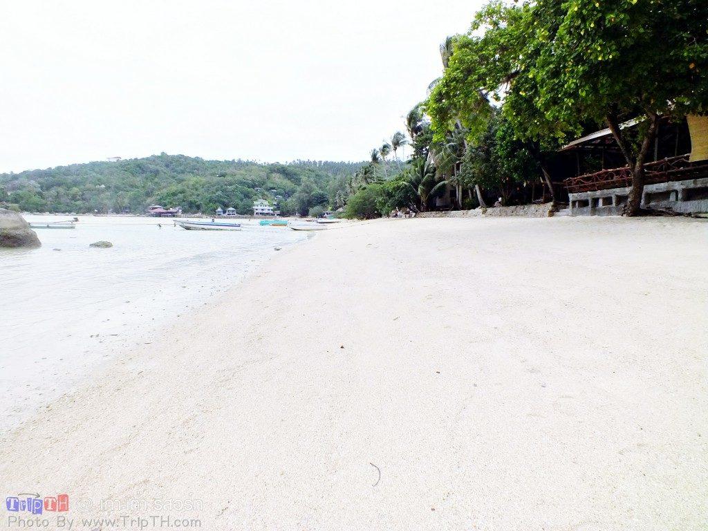 เกาะเต่ารีสอร์ท ยามเช้า (1)