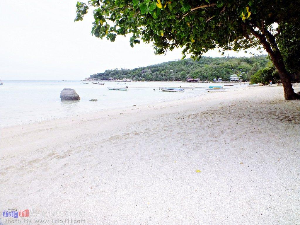 เกาะเต่ารีสอร์ท ยามเช้า (4)