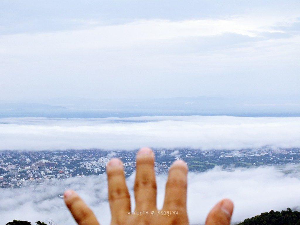 ทะเลหมอกดอยสุเทพ (4)