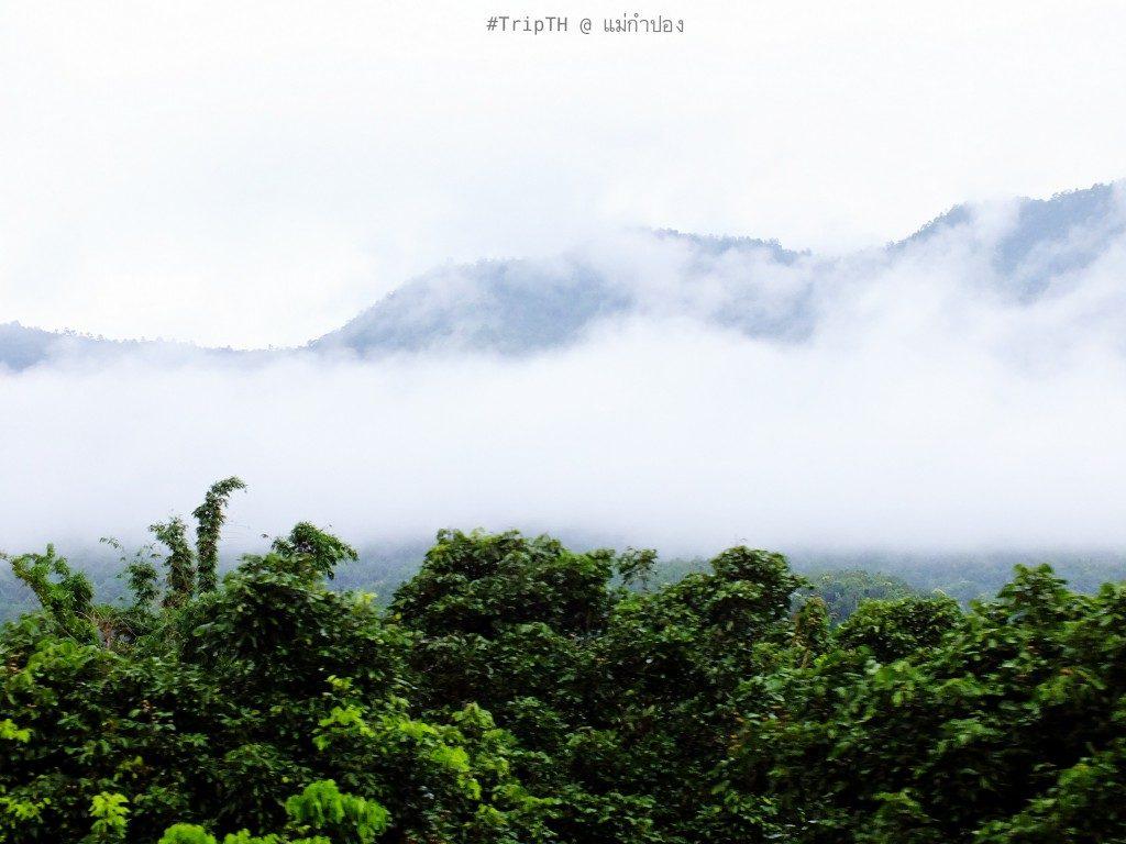 ธรรมชาติ หมู่บ้านแม่กำปอง (2)