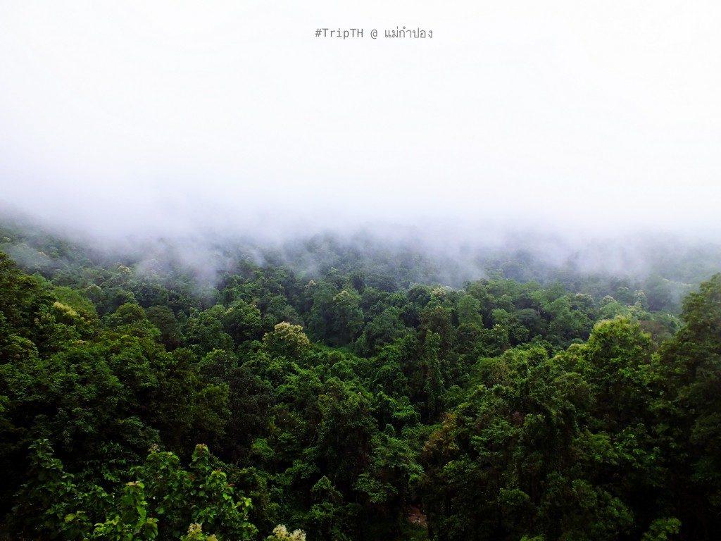 ธรรมชาติ หมู่บ้านแม่กำปอง (3)
