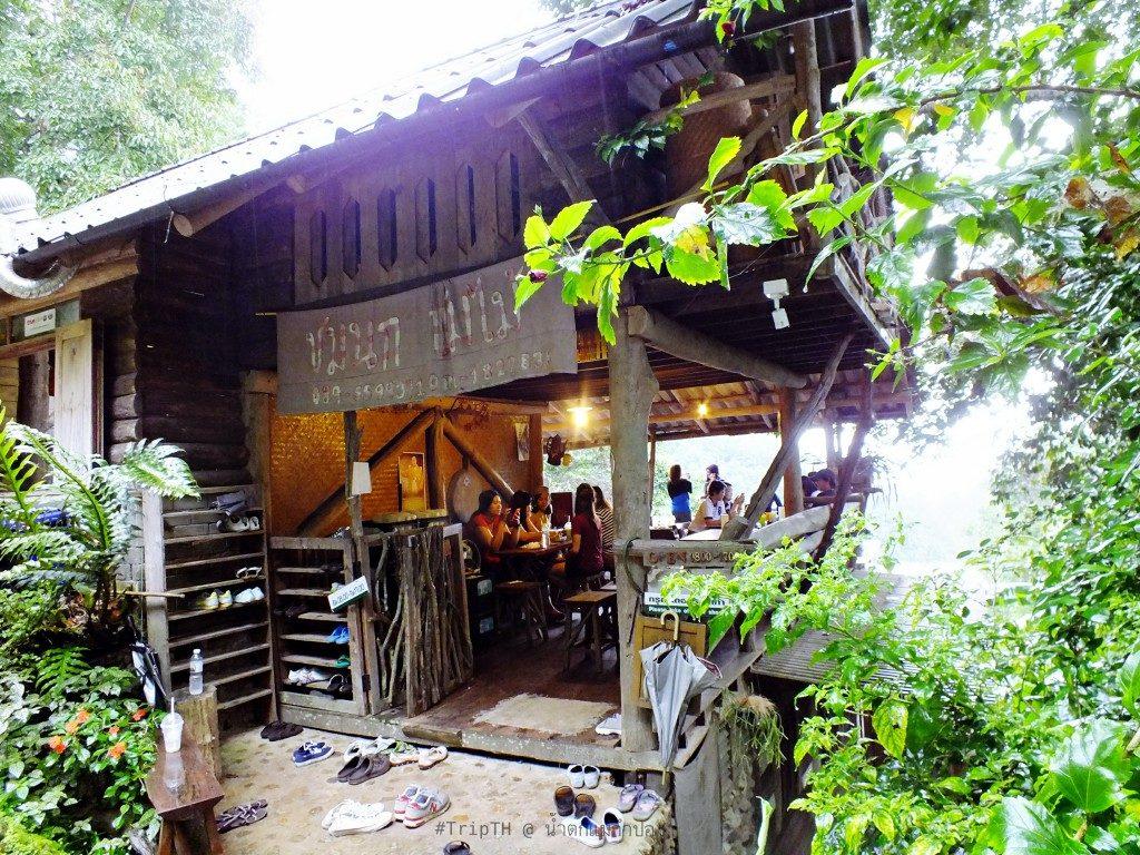 ร้านชมนกชมไม้ บ้านแม่กำปอง (1)