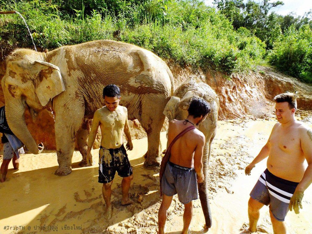 สปา เชียงใหม่ ปางช้างลูลู่ (2)