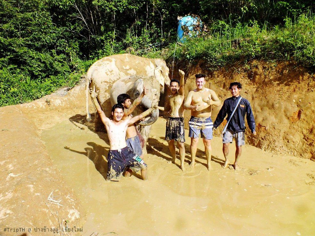สปา เชียงใหม่ ปางช้างลูลู่ (4)